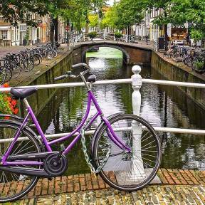 Thumbnail of Netherlands