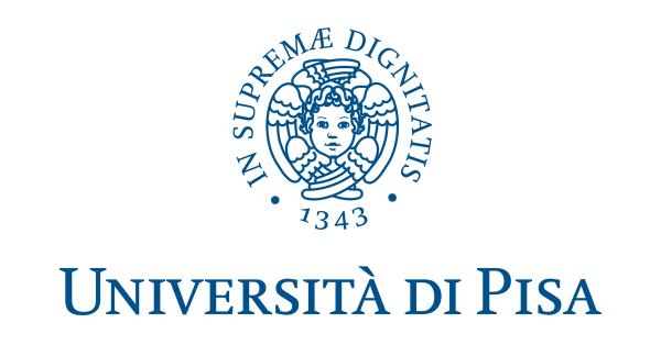 Logo of University of Pisa